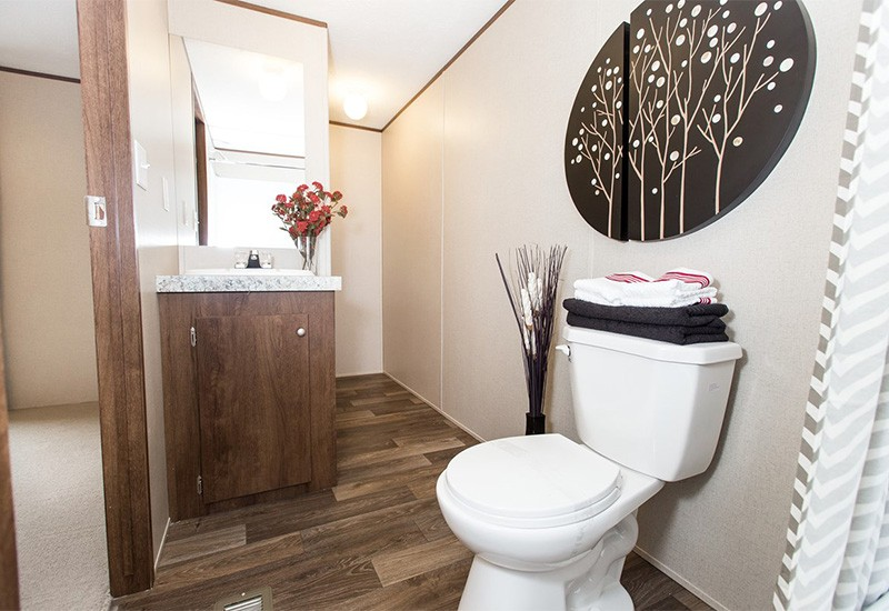 TruMH Steal I / Elation Mobile Home Master Bathroom